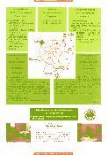 menus du restaurant : BAR RESTAURANT DU CHENE LANDRY page 01